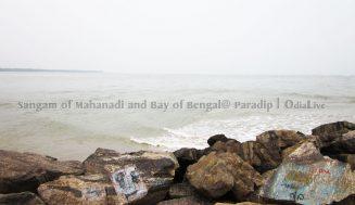 The Place where Mahanadi Meets Bay of Bengal