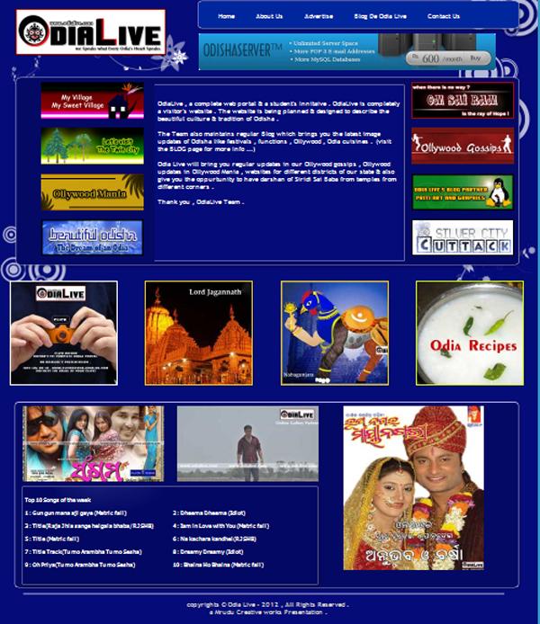nice web templates 2013