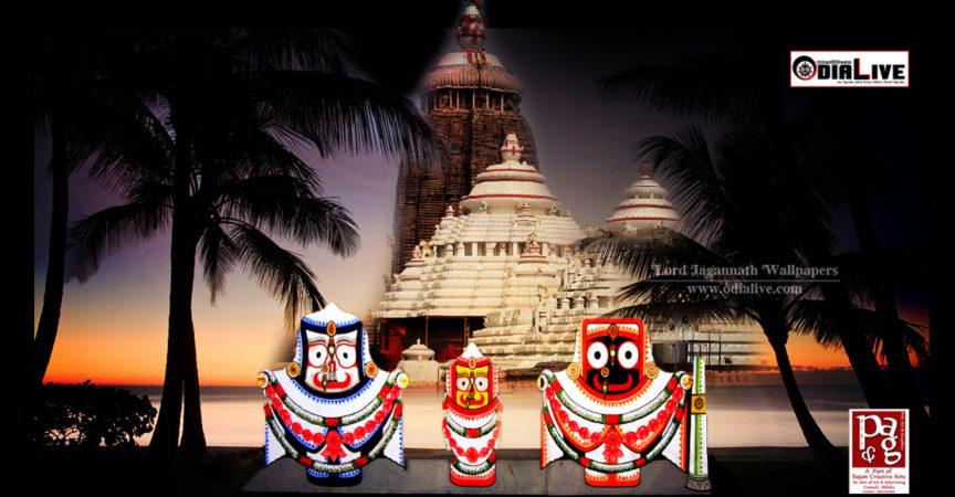 culture of jagannath Bathing ceremony of lord jagannath, lord balabhadra, devi subhadra at char dham temple.