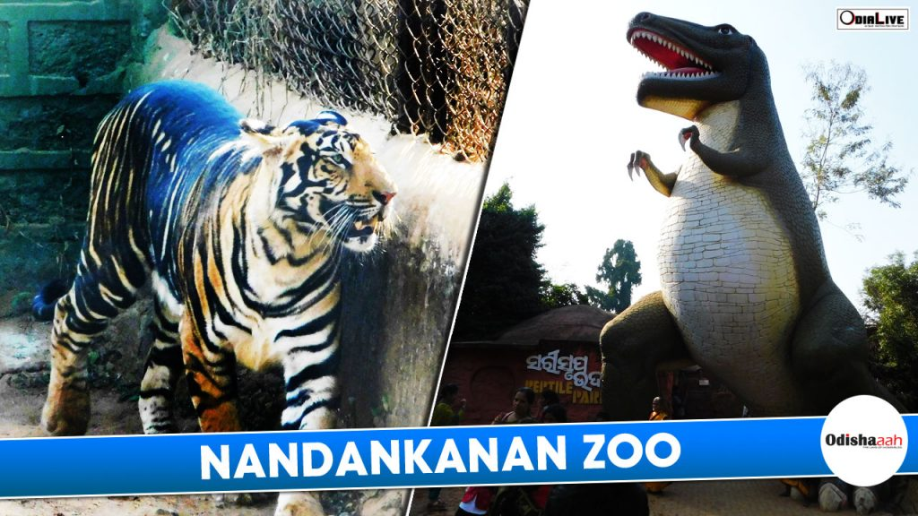 zoo in the world