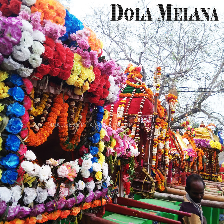 Dola Melana Odisha Odialive