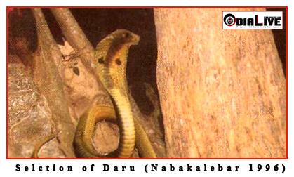 Nabakalebara-2015-Puri-4