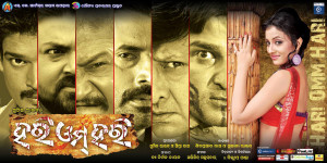 odia film released in 2013