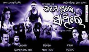 Tame-Thile-Sathire-odia-film