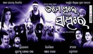 Tame-Thile-Sathire-odia-film