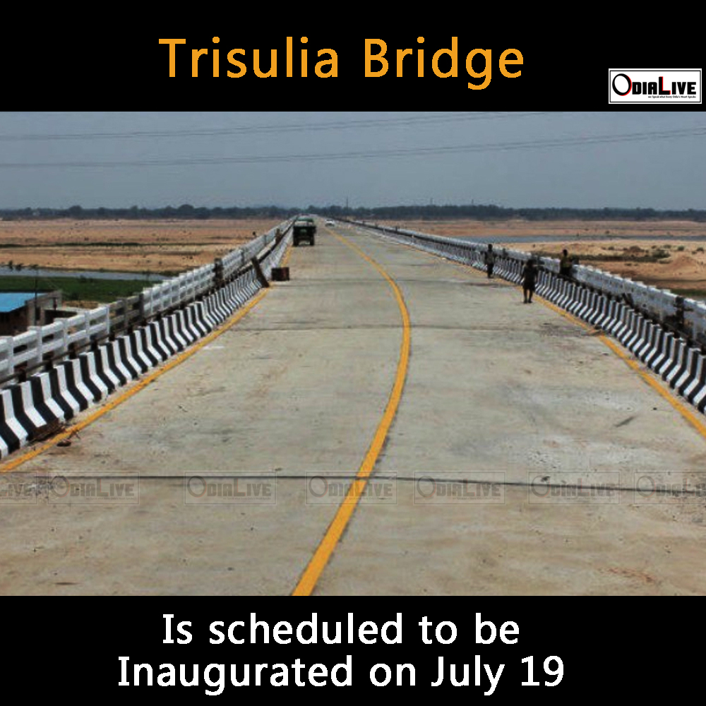 longest bridge odisha